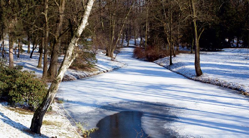 Zimowy Park łazienkowski W Warszawie
